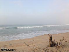 Beach wood,Bois mort San Pedro, Côte d'Ivoire – April2014 Let's appreciate the sea at the morning. –Apprécions la mer le matin.