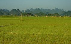 The karst landscape of South China by Yvon from Ottawa, via Flickr