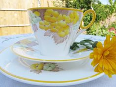 Hey, I found this really awesome Etsy listing at https://www.etsy.com/listing/154253891/shelley-vintage-1930s-tea-trio-and