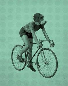 Beagle Reiten ein Fahrrad 8 x 10-Kunstdruck