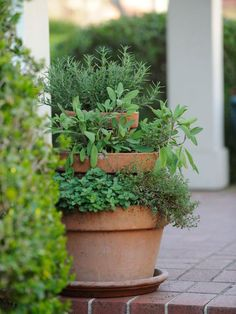 Incorporate edibles into your small landscape using container and raised-bed gardening techniques. Get ideas from gardening personality P. Allen Smith and the landscaping experts at HGTVRemodels.com.