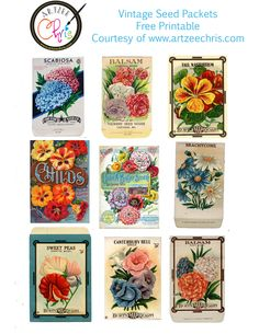 Vintage Seed Packets Free Printable for Scrapbooking and paper crafting from www.artzeechris.com