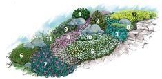 1. Сосна горная (Pinus mugo 'Mops'). 2. Туя западная вересковидная (Thuja occidentalis 'Ericoides'). 3. Можжевельник горизонтальный (Juniperus horizontalis 'Blue Chip'). 4. Флокс шиловидный (Phlox subulata). 5. Ясколка войлочная (Cerastium tomentosum). 6. Очиток белый (Sedum album). 7. Гвоздика дельтовидная (Dianthus deltoids). 8. Тимьян лимонный (Thymus citriodorus). 9. Колокольчик карпатский (Campanula carpatica). 10. Иберис вечнозеленый (Iberis sempervirens). 11. Овсяница сизая (Festuca…