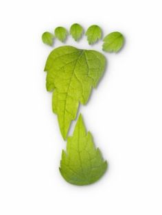 Pun off the idea that we leave an industrial footprint, but suggests we should leave a green footprint