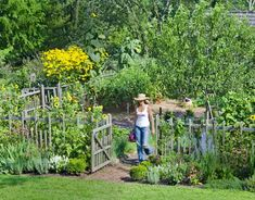 Country Vegetable Garden Ideas thinking about this around outside of my veggie garden. keeps