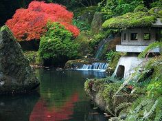 A beautiful Japanese garden. I adore Asian art & their gardens. This shows part of one of their gardens that are very beautiful.