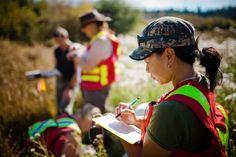 Top 9 Jobs for Environmental Studies/Science Majors