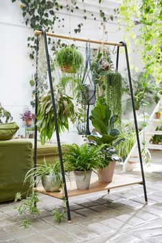 clothing rack turned into an eco plant holder - vertical garden ideas