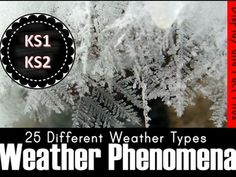 Weather Phenomena Display and Fact Files Tes Resources, Teaching Resources, Weather Display, Weather Art, Key Stage 2, Science Week, Facts, Tornados, Natural Phenomena