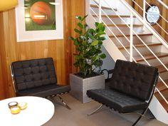Silver planter as a dividing piece between 2 pieces of Miles Van Der Rohe furniture