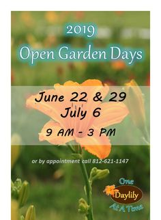 Daylily garden in southeastern Indiana. We ship daylilies in the U. and garden visits. Daylily Garden, Cant Wait To See You, Day Lilies, Summer, Summer Time