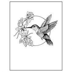 hummingbird design -: