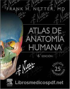 Atlas De Anatomía Humana Netter 6ª Edición - Libros Medicos PDF