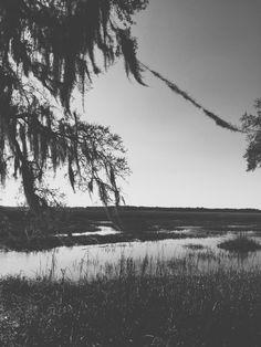 Living on the water in Savannah,Ga