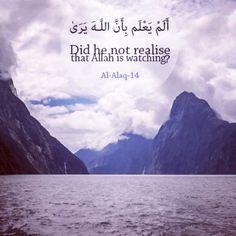 Holy Quran 96:14 ------------------ أَلَمْ يَعْلَمْ بِأَنَّ اللَّهَ يَرَىٰ Does…
