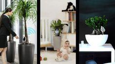 Let your plants look after themselves with Air & Life - from #DesignLab2014