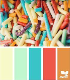 sprinkled color at Design Seeds