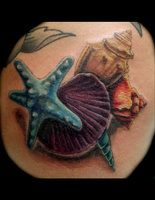 seashell tattoo - Google Search