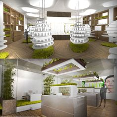 BIOPHARMACY IN BERLIN Organic and warm interior of biopharmacy, where only products with roots in nature are being sold. Natalia Leszczyńska Poland