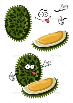 Tropical Smelly Cartoon Durian Fruit, Funny cartoon exotic tropical durian fruit with dark green spiky peel and sweet yellow flesh. Healthy vegetarian dessert, recipe book or menu design usage