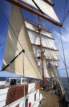 Staysail and square sails, four masted barque Sedov, Tall Ship Race 2009 - Turku - Klaipeda