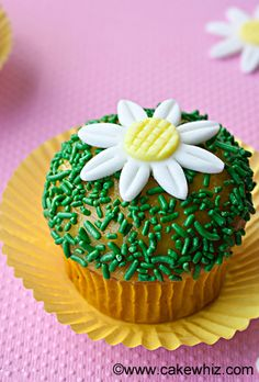 Use this step-by-step tutorial to make EASY DAISY CUPCAKES. Great for Spring and Summer parties! From cakewhiz.com