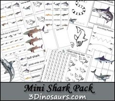 I got asked about this and well quick Mini Shark Pack for Shark week! We love to watch Shark Week! It is fun every year. These Shark printables are made to be use Preschool At Home, Preschool Themes, Preschool Crafts, Shark Activities, Vocabulary Activities, Montessori, Ocean Crafts, Money Saving Mom, Ocean Themes