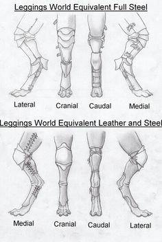 Leggings for digtigrade characters