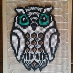 Owl perler beads by kcpopick13
