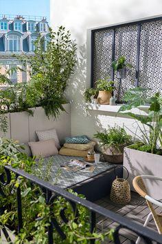 Small Balcony Design, Small Balcony Garden, Small Terrace, Small Balcony Decor, Small Balconies, Small Patio, Plants For Balcony, Balcony Planters, Modern Balcony