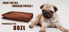 #legowisko dla psa co o tym sądzisz? :)