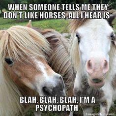 Stop horsing around u guys funny horse memes, horse humor, funny horses, funny Funny Horse Memes, Funny Horses, Cute Horses, Horse Love, Beautiful Horses, Funny Dogs, Horse Humor, Horse Girl, Funny Humor