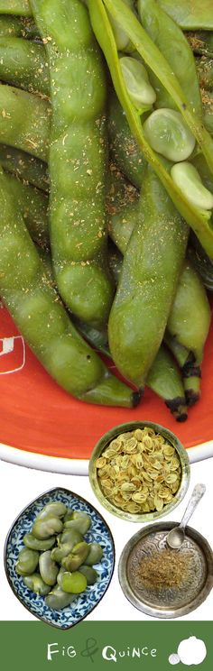 Fava bean cooked Persian style, served w/ ground angelica (Baghali: Persian edamame)