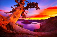 Sunset at Crater Lake Nat'l Park (Oregon)