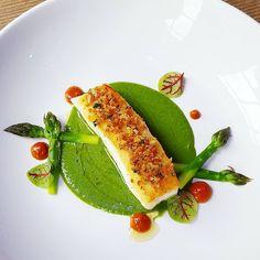 Herb crusted halibut, asparagus puree