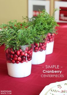 Eye-Catching DIY Christmas Centerpieces , Easy Cranberry Centerpiece Idea note to self: Epsom salts, fresh cranberries and any evergreen branches cut in appropriate sizes for containers. Toss the lots when dried out. Stays fresh for several days. Christmas Table Centerpieces, Centerpiece Decorations, Holiday Tables, Decoration Table, Xmas Decorations, Party Centerpieces, Homemade Decorations, Holiday Parties, Noel Christmas