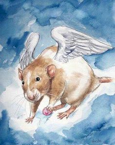 Miss you ever day Marty.. Tribute art by Drusilla Kehl to our beloved rattie boy