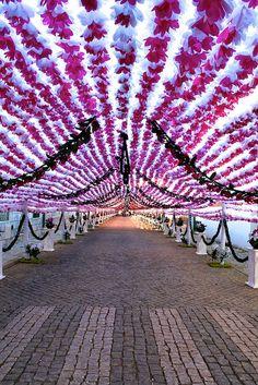 Campo Maior, Flower festival, Portugal