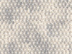 Motif wallpaper BRILLIANT DISGUISE Giò Pagani 15 Collection by Wall