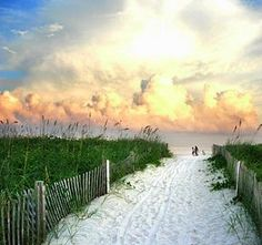 Someday I will visit a South Carolina beach! I think its the country girl in me South Carolina Coast, Carolina Beach, The Places Youll Go, Places To See, Relaxing Photos, Nature Landscape, Beach Wallpaper, All I Ever Wanted, Down South