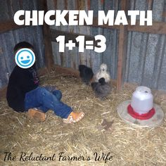 Chicken math is real! Read to see how 1+1=3