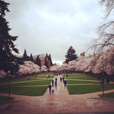 4) The dream location of your dream job - University of Washington, Seattle, Washington, where I would love to earn my Ph.D. in English literature and eventually teach! #modcloth #makeitwork