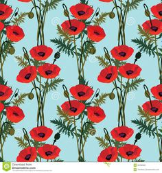 Poppies against the sky (dreamstime)