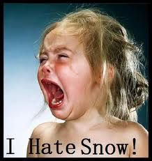 pretty much how I feel about cold and snow :)