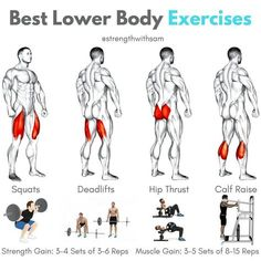 Best Lower Body Exercises! Quadriceps: Squats (Back or Front)Hamstrings: Conventional DeadliftGlutes: Hip ThrustCalves: Standing Calf Raise__Each of these exercises should be included in your lower body training plan for optimal development.__For primarily strength gain, 3-4 sets of 3-6 reps mostly will work well. For primarily muscle gain, 3-5 sets of 8-15 reps will be good.