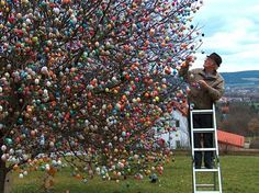 The most elaborate Easter egg tree ever! Over 9500 eggs!