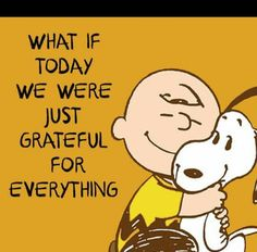 Happy Thanksgiving, Everyone!! Every day is a day for thanks and gratitude.