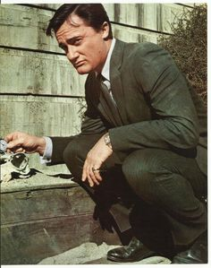 Man from U N C L E Robert Vaughn as Napoleon Solo Holding Watch 8 x 10 Photo | eBay