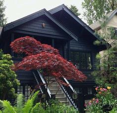 Mid Century Modern! Black exterior with gorgeous Japanese maples! Love the staircase and hand railings!