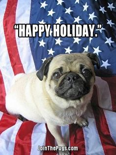 Happy Independence Day from @jointhepugs ・・・ www.jointhepugs.com ・・・